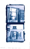 Cyanotype on on Bristol drawing paper