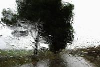 Rain di Abbas Kiarostami