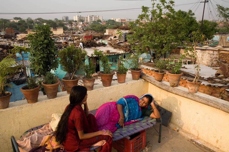 The Gardens Of Delhi Public Spaces Private Lives By Stuart Freedman
