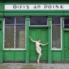 The Nude in the Irish Landscape, by Eamonn Farrell