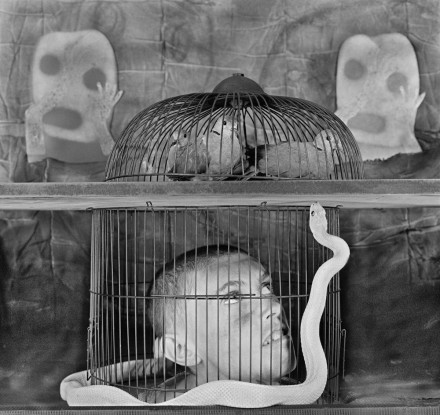 Photo by Roger Ballen: Caged