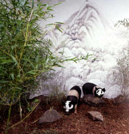 Panda Zoo©  Xu Bing